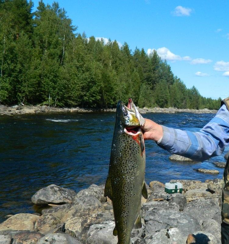 рыбалка в спб и лен обл в контакте